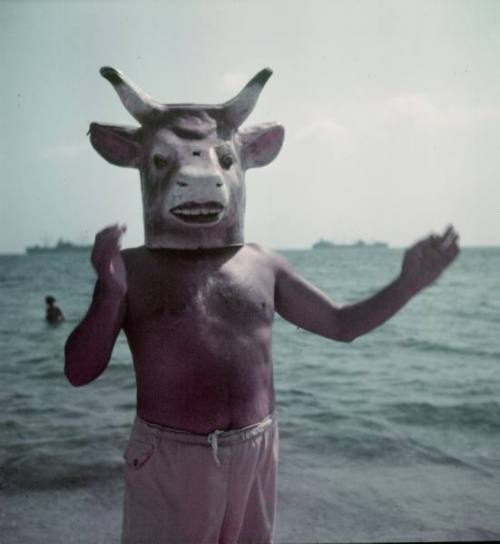 Pablo Picasso wearing a cow's head mask on beach at Golfe Juan near Vallauris, France, 1949 by Gjon Mili for LIFE