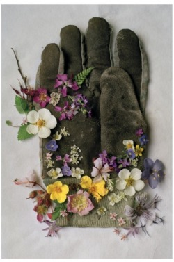indigodreams:  crochet:  GARDENING GLOVE, NORTHUMBERLAND ENGLAND, 2000 (via Tim Walker Photography)