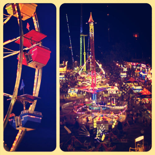 motothelissa:  Minnesota State Fair - ferris wheel and midway