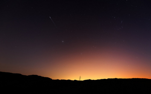 spacettf:  A Southern Perseid by lrargerich on Flickr.