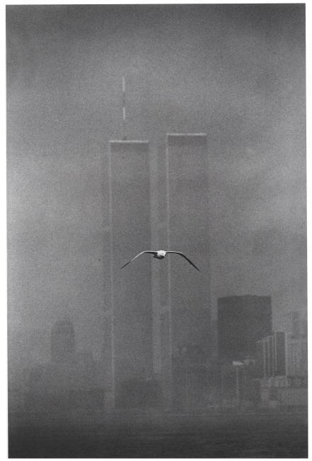 "© Louis Stettner, 1979, 'Twin Towers, World Trade Center', New York In his work, Stettner focuses on documenting the lives of the  working class in both Paris and New York. He felt and still believes  that the cities belong to the people that live there, not the tourists  and visitors. His upbringing caused him to take great care in capturing  the simple human dignity of the working class. ""Idea for a short story. The shore of a lake, a young girl who's spent  her whole life beside it, a girl like you She loves the lake the way a  seagull does, and she's happy and free as a seagull. Then a man comes  along, sees her, and ruins her life because he has nothing better to do.  Destroys her like this seagull here."" (Anton Chekhov,'The Seagull' )  (via burnedshoes)"