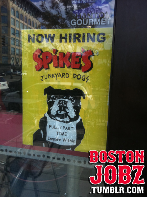 Spike's Junkyard Dog's in Back Bay near Berkeley is hiring for both F/T and P/T! Apply in person at 1076 Boylston on the corner of Mass Ave. If you get the gig I expect the hook up on a veggie dog!