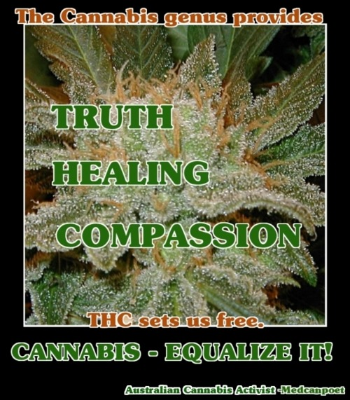 Cannabis- Equalize It!