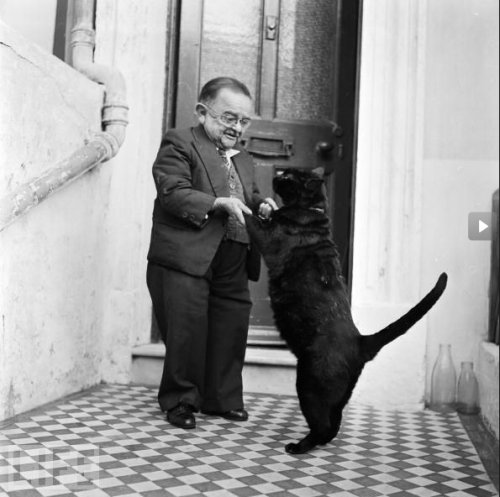 thingsandschemes:  In 1956, Henry Behrens was the world's smallest man. Here he is dancing with his cat.