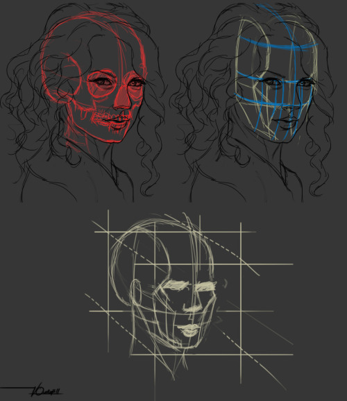 Taylor Swift in blocks/planes, and skull. Blue - facial symmetry Red - skull Green - blocks/planes
