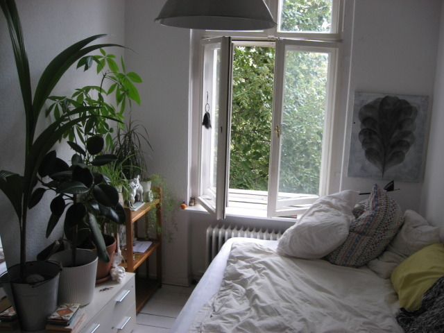 cocoanu-t:  Looks so cosy :)