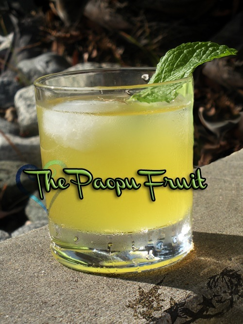 Paopu Fruit (Kingdom Hearts Cocktail) Ingredients:2 parts pineapple juice1 part limoncello1 part Creme de Banana 1 mint leaf  Directions: Shake all ingredients and pour in a lowball glass over ice.  Add a mint leaf as a garnish.  This sweet, citrus drink is sure to cool you off on those hot, island days. Sora: A paopu fruit…Riku: If two people share one, their destinies become intertwined. (Drink created and photographed by Deena. Thanks for the submission!)