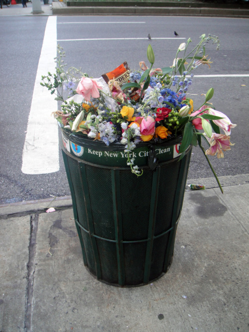 dantia:  why throw perfectly fine flowers in the bin?