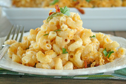 gastrogirl:  jalapeño popper buffalo chicken macaroni and cheese.