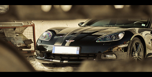 automotivated:  Corvette C6 Competition (by Lambo8)