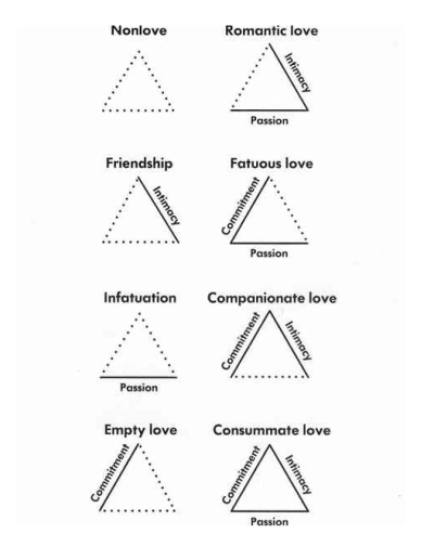 psychology2010:  Sternberg's Love Theory  The triangular theory of love is a theory of love developed by psychologist Robert Sternberg. In the context of interpersonal relationships, 'the three components of love, according to the triangular theory, are an intimacy component, a passion component, and a decision/commitment component'.Intimacy – Which encompasses feelings of attachment, closeness, connectedness, and bondedness.Passion – Which encompasses drives connected to both limerence and sexual attraction.Commitment – Which encompasses, in the short term, the decision to remain with another, and in the long term, the shared achievements and plans made with that other.