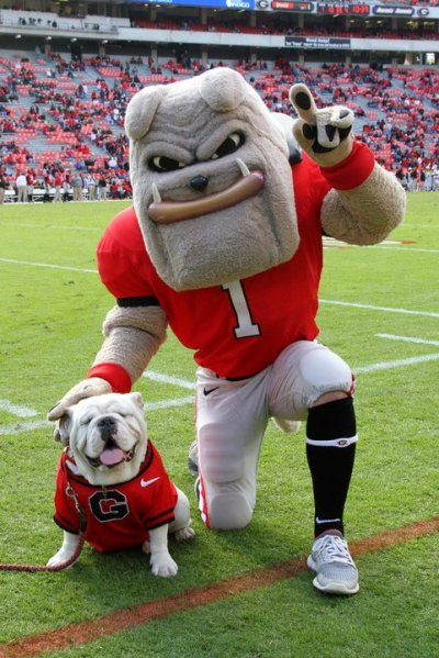UGA football starts tomorrow and I'm in MD…. sad :(