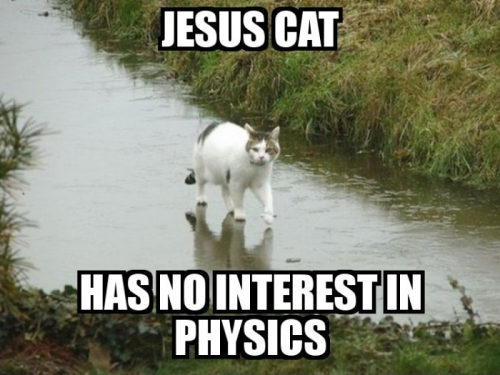 funny-pictures-uk:  The lord is back in feline form.