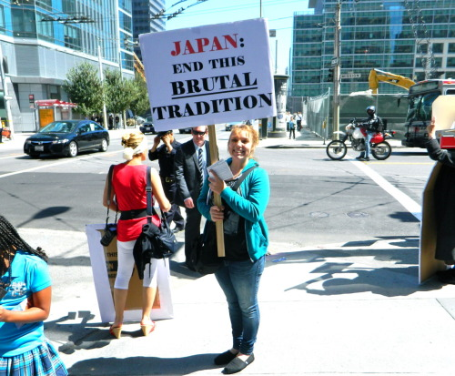 findingthebeautyofit:  Protest and Awareness Against Taiji Dolphin Slaughter in SF. Today (9/1)