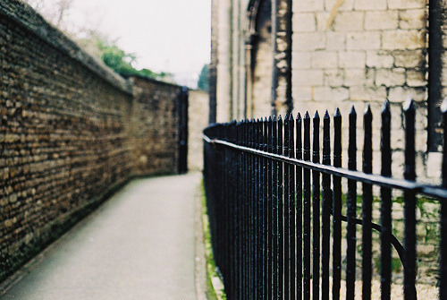 | ♕ |  Peterborough cathedral fence  | by quantum locked | via raddish-earrings