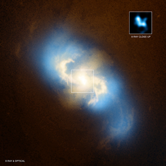 weareallstarstuff:  Space Cannibal: Ginormous Black Hole Caught Eating Another   A monstrous black hole at the heart of one galaxy is being devoured by a still larger black hole in another, scientists say. The discovery is the first of its kind. At the centers of virtually all large galaxies are black holes millions to billions of times the mass of the sun. Models simulating the formation and growth of galaxies predict their black holes evolve as the galaxies do, by merging with others. Astronomers had witnessed the final stages of the merging of galaxies of equal mass, so-called major mergers. Minor mergers between galaxies and smaller companions should be even more common, but, strangely, these had not been seen until now.