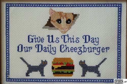aebaxter:  Cross stitch + internet memes = win