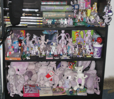 someone asked to see my mewtwo collection. my site for it is horribly out of date. unfortunately this shelf doesn't give an accurate idea of how much i have, either. currently not on display are TCG cards, pokemon pan sitckers, assorted other stickers & cards, some folders, some books, mousepads, lanyards, the mewtwo champagne glass… (edit: the HP and xfiles and car books are there because i've run out of shelf space on the other book shelves. we really need to move!)