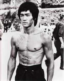 raccoonology:  Bruce Lee