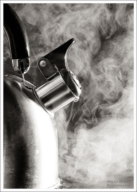 prathmesh:  Steam (56/365) by Brian Gudas Photography on Flickr.