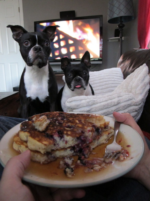 Excuse me daddy, but can we have some pancakes now?