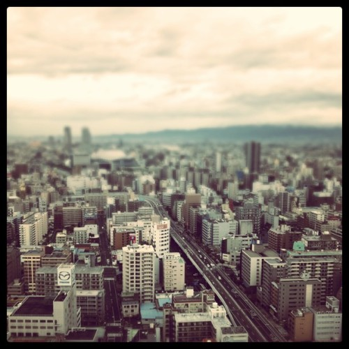 chichijao:  Osaka (Taken with instagram)  <333