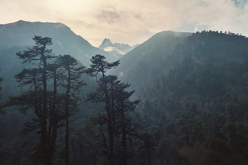 westeastsouthnorth:  Mechi, Nepal