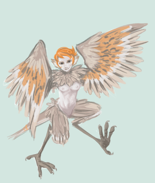 This is a harpy girl for http://gollywollypog.tumblr.com/ because we're thinking of doing a silly monster girl table top and she wanted a picture of her character idea for her birthday :3 I will probably draw the rest of us but I doubt I will put quite as much time as I put into this one @_@ Oh yeah and she will probably have some sort of clothing eventually