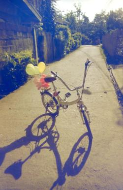 My bike, Giraffe. by melancholik (Melanie B. Oncog) Benesse Toy camera Solid Gold 200 (DIY redscale)