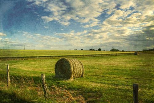 hay bale by Dyrk.Wyst on Flickr.