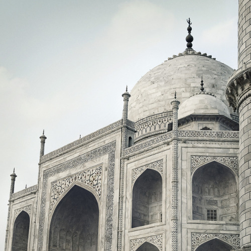 on-the-roof:  Taj Left by Spencer Wilton on Flickr.