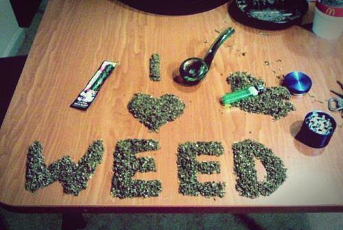thcfinder:   REBLOG IF YOU LOVE WEED !    Got bud?