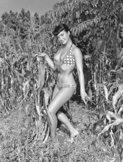 If Bettie Page can't make your corn grow, I don't know what will. Read more…