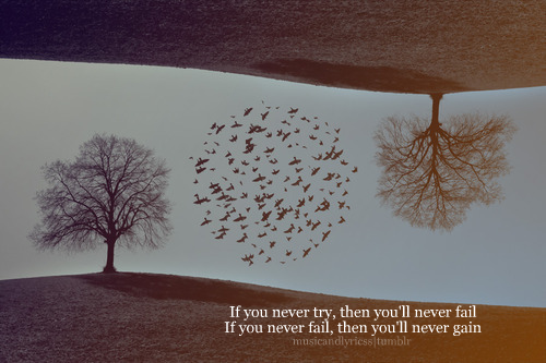 if you never try, then you'll never fail If you never fail, then you'll never gain.