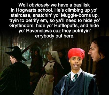 Harry Potter Snatchin' you muggle-borns up