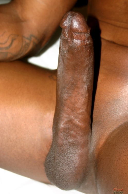 blkinwhite:  whiteboys reblog if you've never had blk dick but want 2