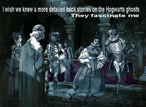 whattawiseguy:  I suppose there could be on Pottermore but I wouldn't know since I DON'T HAVE EARLY ENTRY :P The photo used is one of the concept arts byAdam Brockbank :)