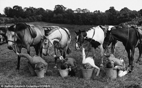 Date unknown Riders swap roles with their mounts to quench their thirst (via Mail Online)