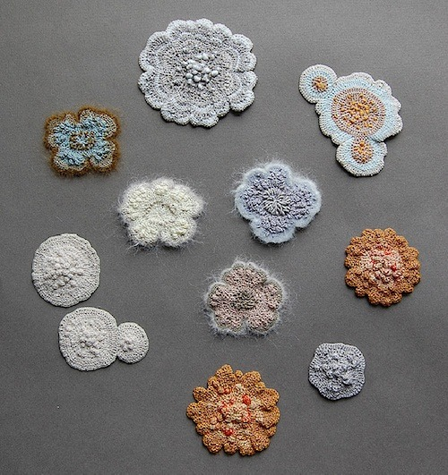 caseyland:  Elin Thomas' crocheted mold and lichens.  Mold is awesome!