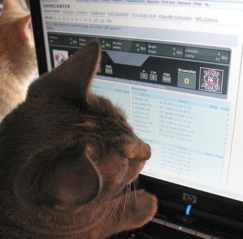 1 of the CatswithGats team members prepping for tonight's fantasy football draft #catswithgatsforthewin