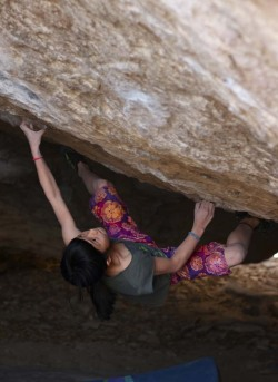 celestialsloth:  Ashima Shiraishi on Right Martini (V12), Hueco Tanks  Kat and I see her climbing at BKB all the time. She's fucking 9, a national champion, and can put us all to shame. A V12! What a badass little woman.