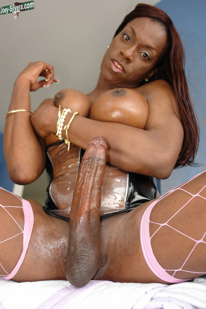 Big black shemale cock getting sucked