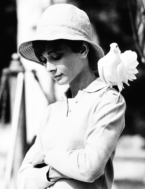 Audrey Hepburn photographed by Terry O'Neill
