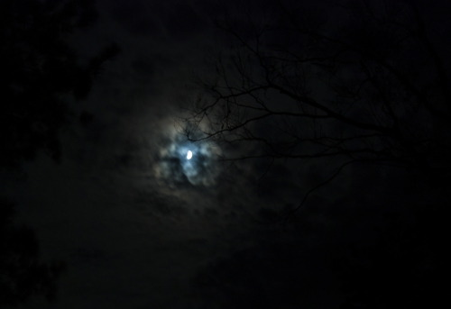 The sky looked so eerie last night that I had to take a photo.