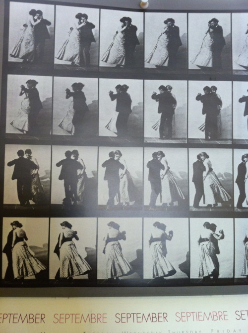Birthday Month! Eadweard Muybridge, father of cinema