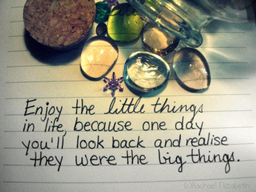 Enjoy the Little Things by ~XxSafetyPinsxX on deviantART on We Heart It. http://weheartit.com/entry/13929010