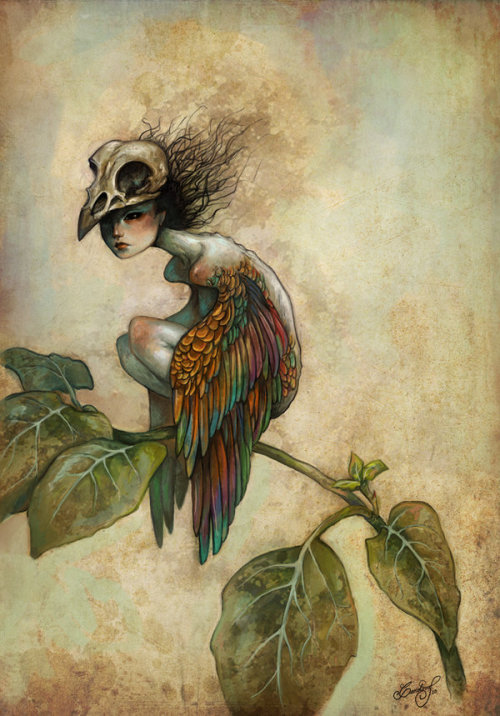 mushroomflesh:  Birdie by ~aeryael