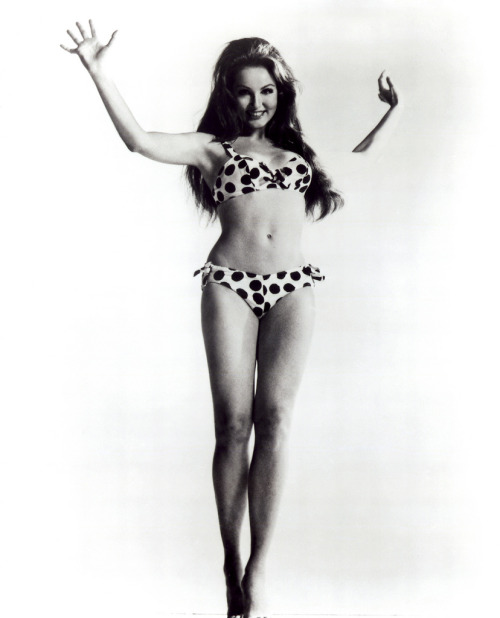 hollyhocksandtulips:  Julie Newmar