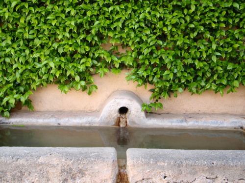 Water trough in the Alhambra Generalife.
