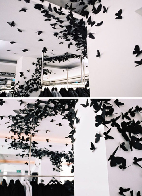 Butterfly installation at Dior Homme.